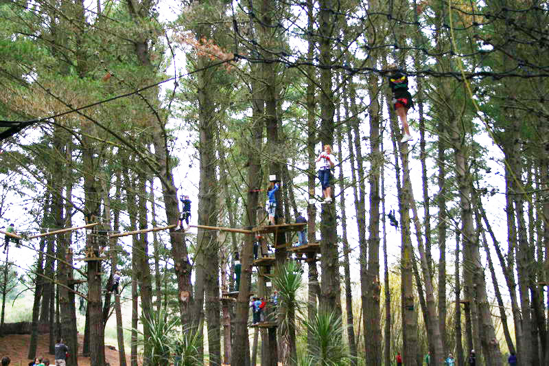 Adrenaline Forest in Christchurch, New Zealand