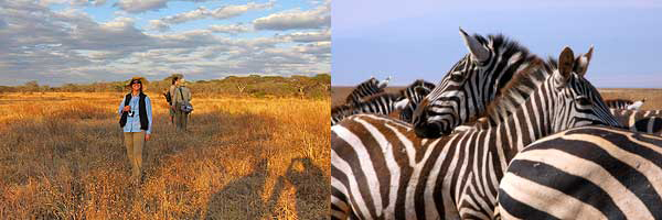 Get mesmerized in the beauty of Africa